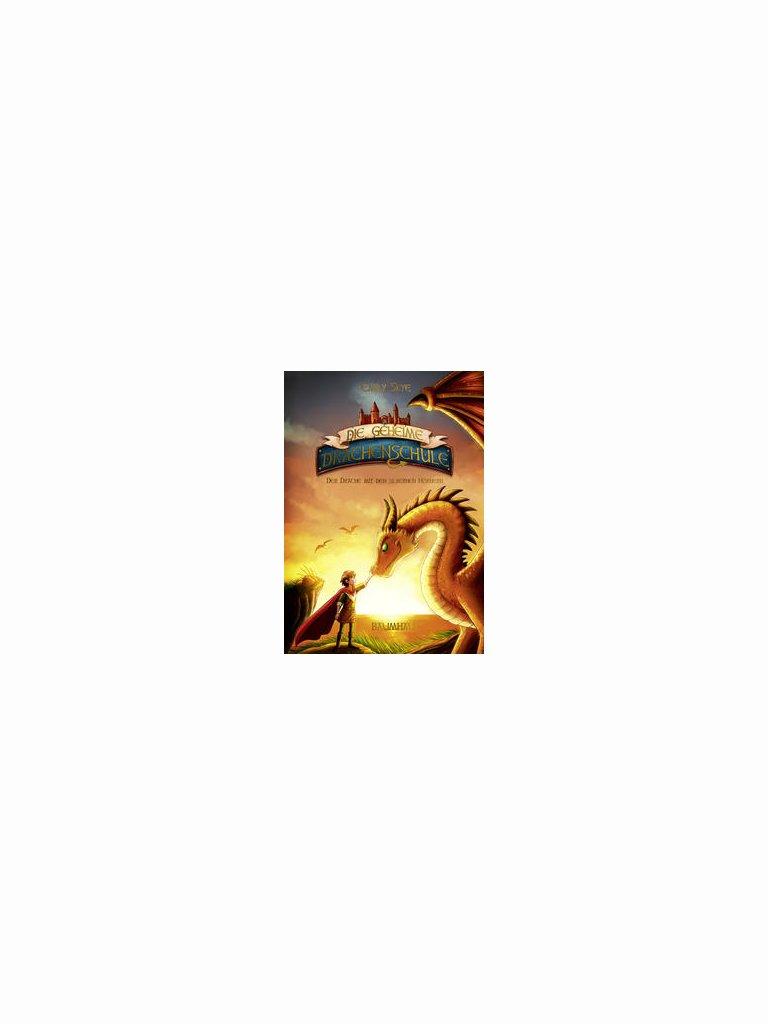 Die geheime Drachenschule - Bd 2
